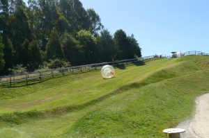 Zorbing down the hill