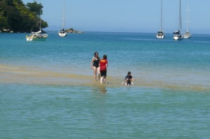 Beautiful waters of Abel Tasman