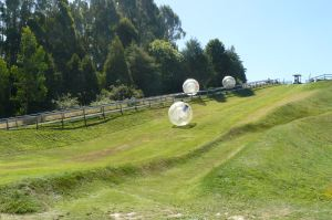 zorbing down the hill new zealand